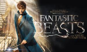 Fantastic Beasts - PeriPeri - Eventi a Catania