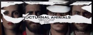 Nocturnal Animals - PeriPeri Catania