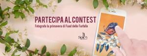 PeriPeri Catania - Fuad delle farfalle