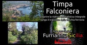 eventi a Catania- Tampa Falconiera